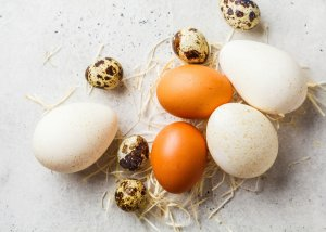 eggs in a health and wellness coaching article presenting 2 simple ways to have better skin